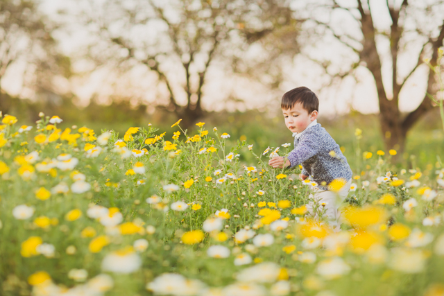 kid picking flowers in field picture