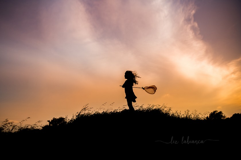 butterfly catcher silhouette photo by Liz Labianca
