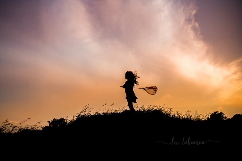 butterfly catcher silhouette photo by Liz Labianca