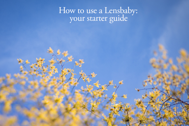 how to use a lensbaby by nina mingioni
