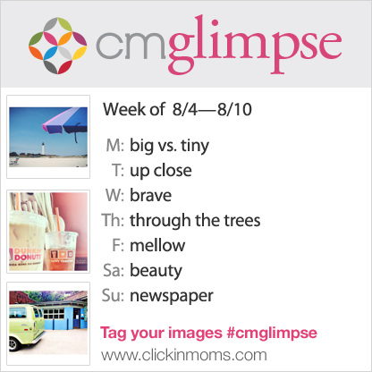 CMglimpse instagram project prompt list for august 3