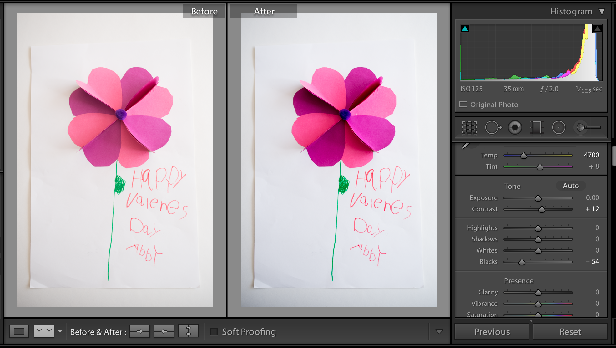 adding contrast in Lightroom to photos by Melissa Stottmann