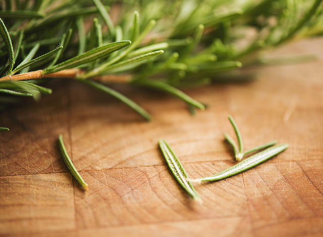 fresh rosemary photo by Tami @azphotogmom