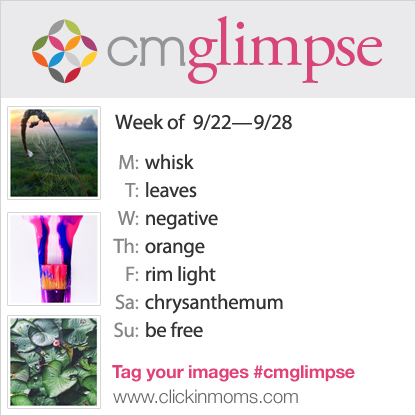 CMglimpse Instagram photo project prompt list for September 22