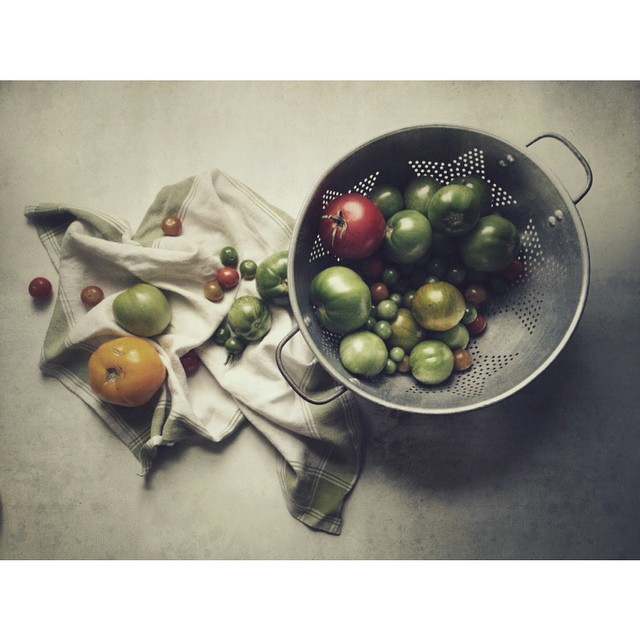 colander of tomatoes instagram picture by srlech