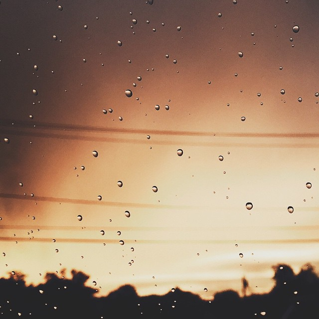 drops of rain instagram pic by johanna_mariel