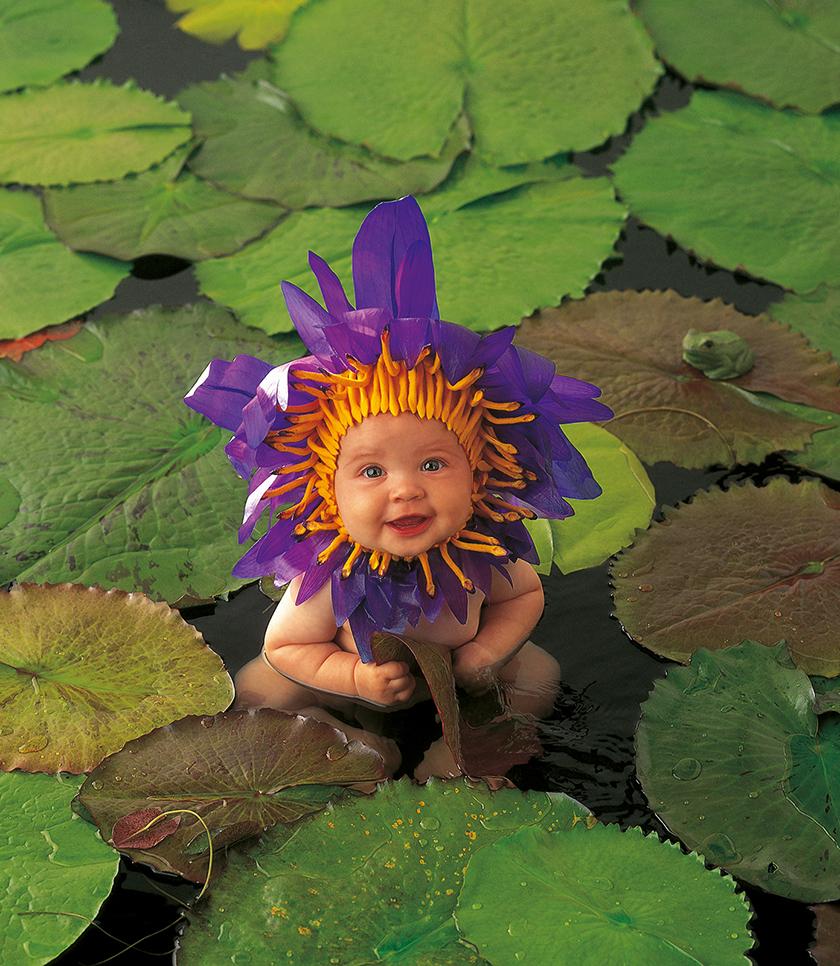 Цветы смешные картинки детские