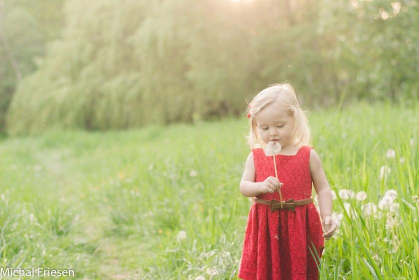 little girl in a field picture by Michal Friesen