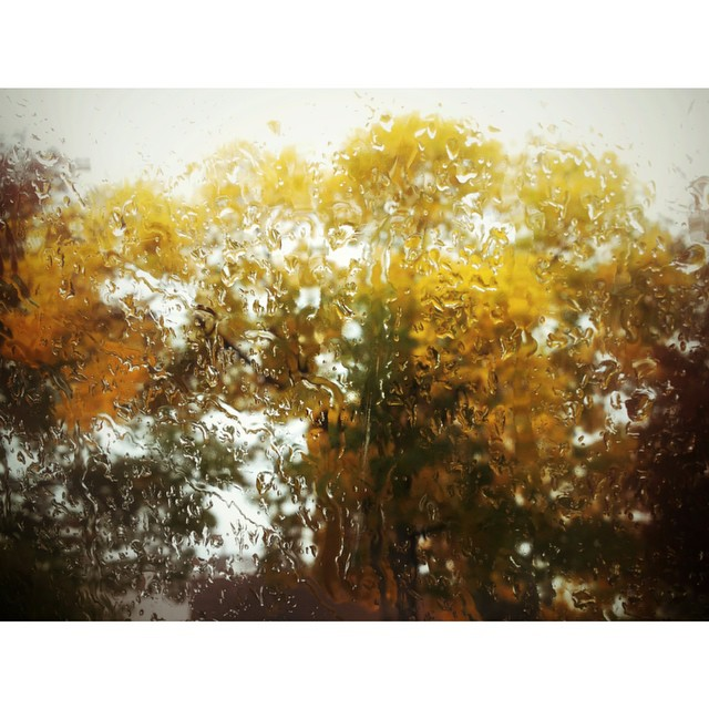 raindrops instagram pic by srlech