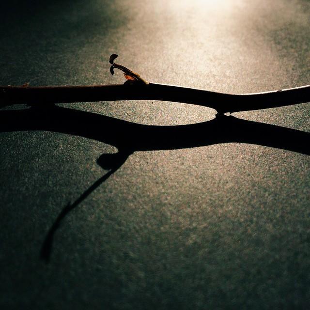 rim light stick instagram pic by denstorm