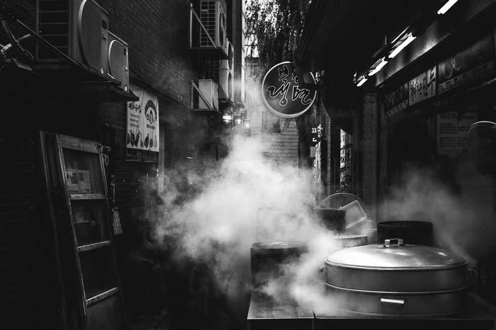 Steaming Mandu by Jayne Cho