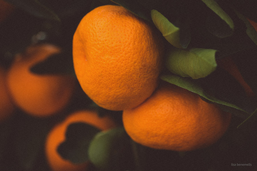 oranges by Lisa Benemelis