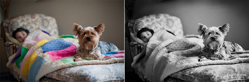 before and after photo with good tonal range processed into black and white by Amy Schuff