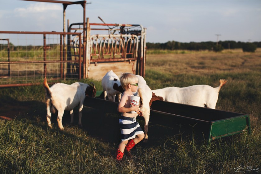 boy giving goats food pic by April Burns