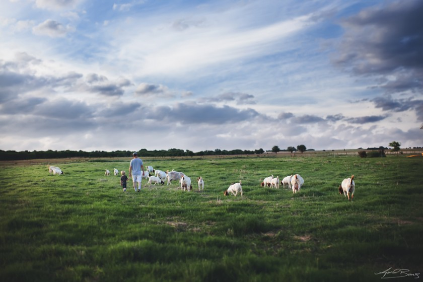 farm life pic by April Burns 3