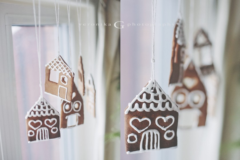 gingerbread houses ornaments by Veronika G Photography