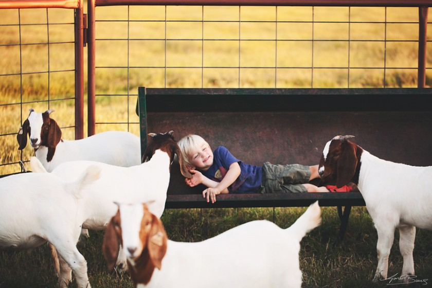 kid playing with goats pic by April Burns