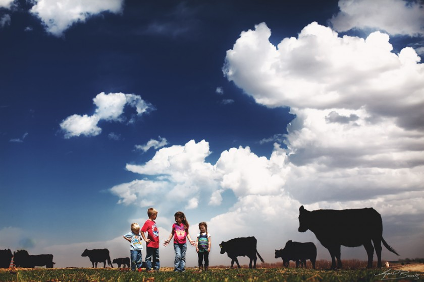 kids and cows photo by April Burns