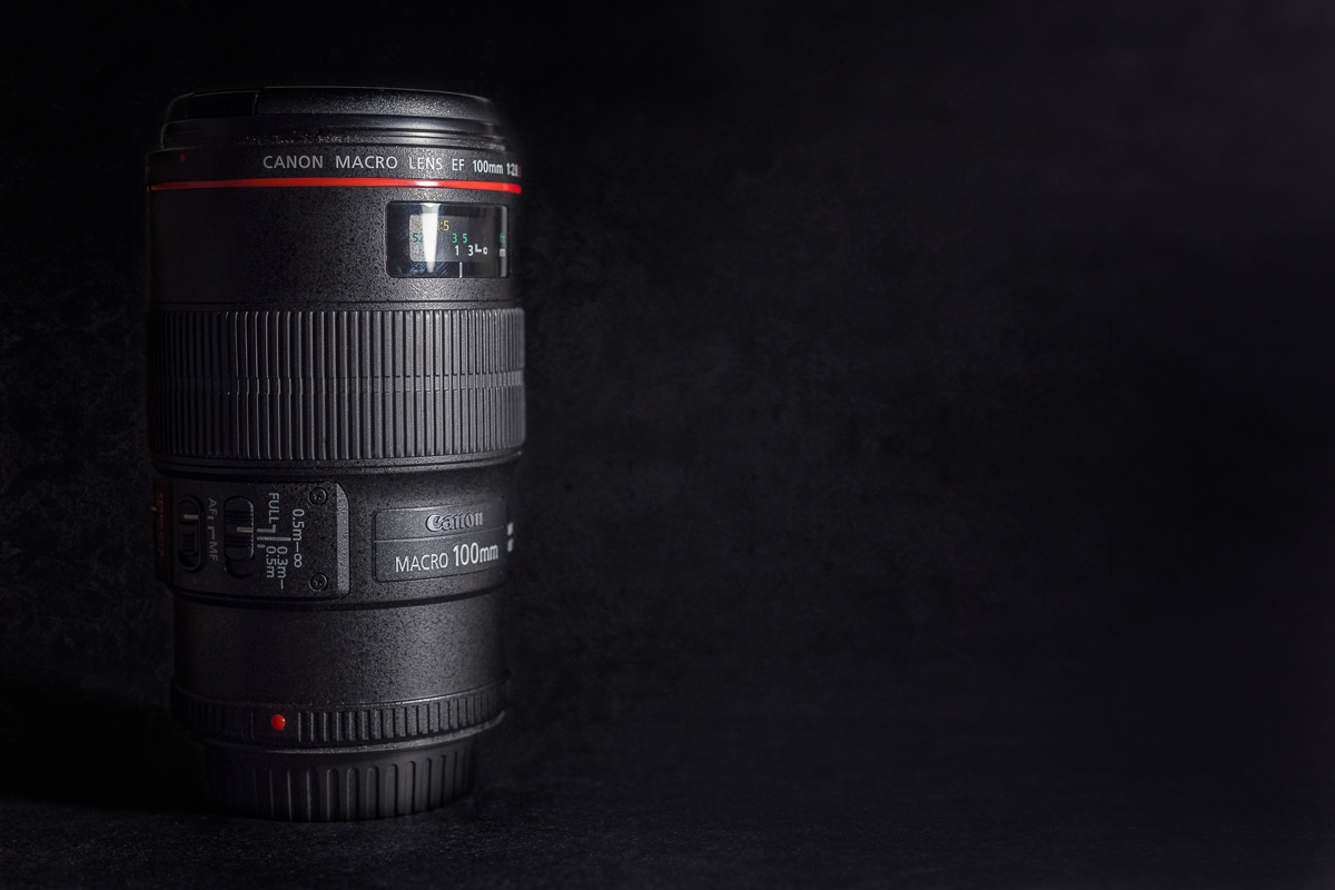 Canon 100 2.8 L macro lens by Nina Mingioni