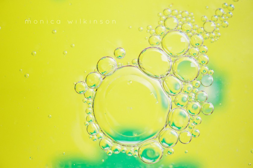 green and yellow bubble macro photo by Monica Wilkinson