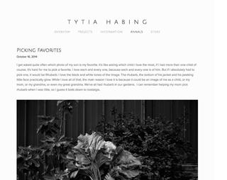 http_www.tytiahabing.com_annals-fine-art-photography-website