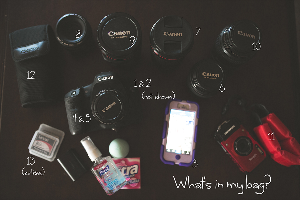 Canon camera and lenses of photographer Liz Behm