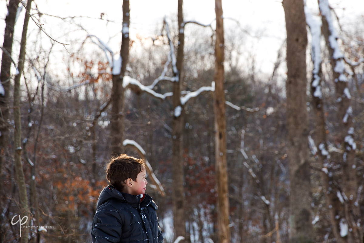boy in the snow covered woods by Celeste Pavlik