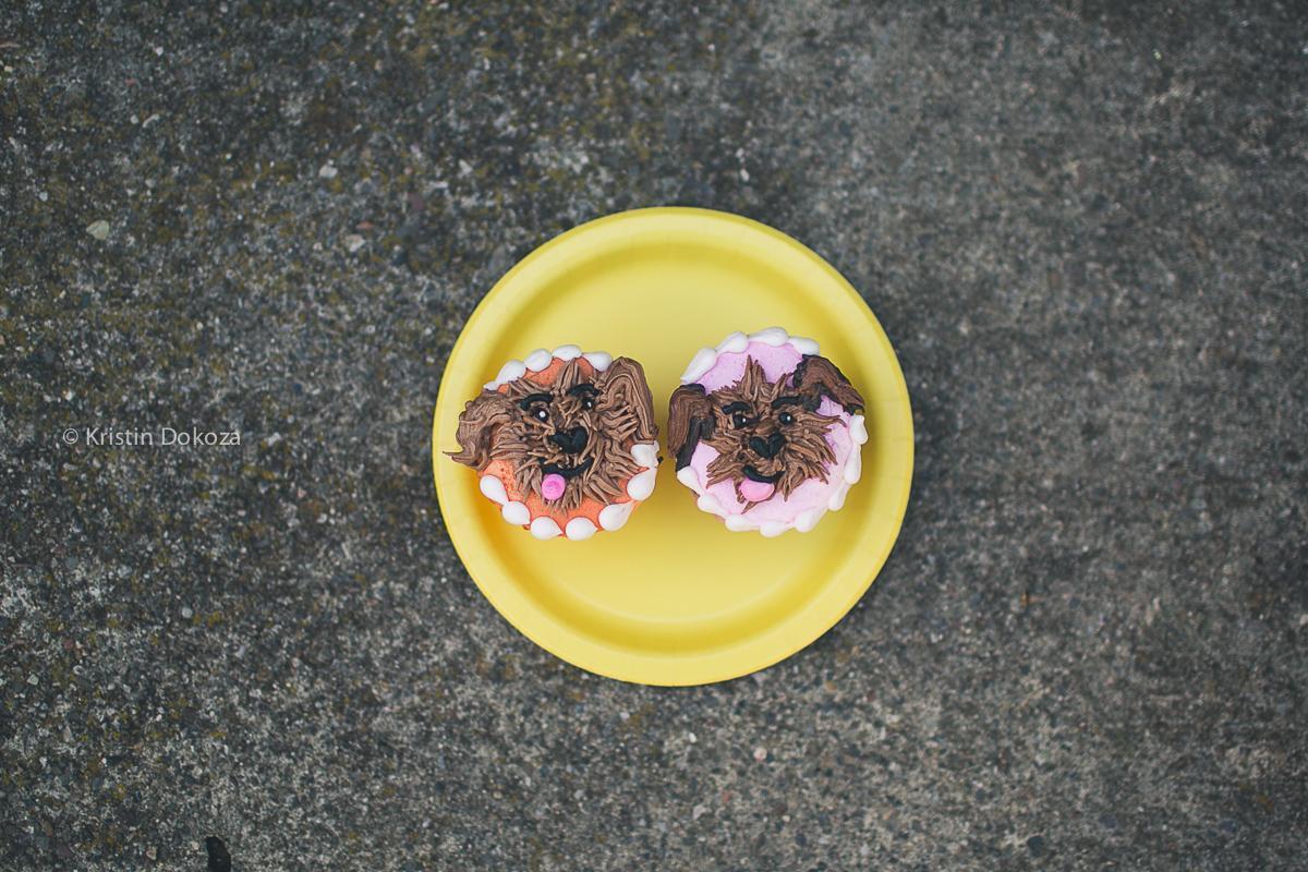 photo of birthday cupcakes by Kristin Dokoza