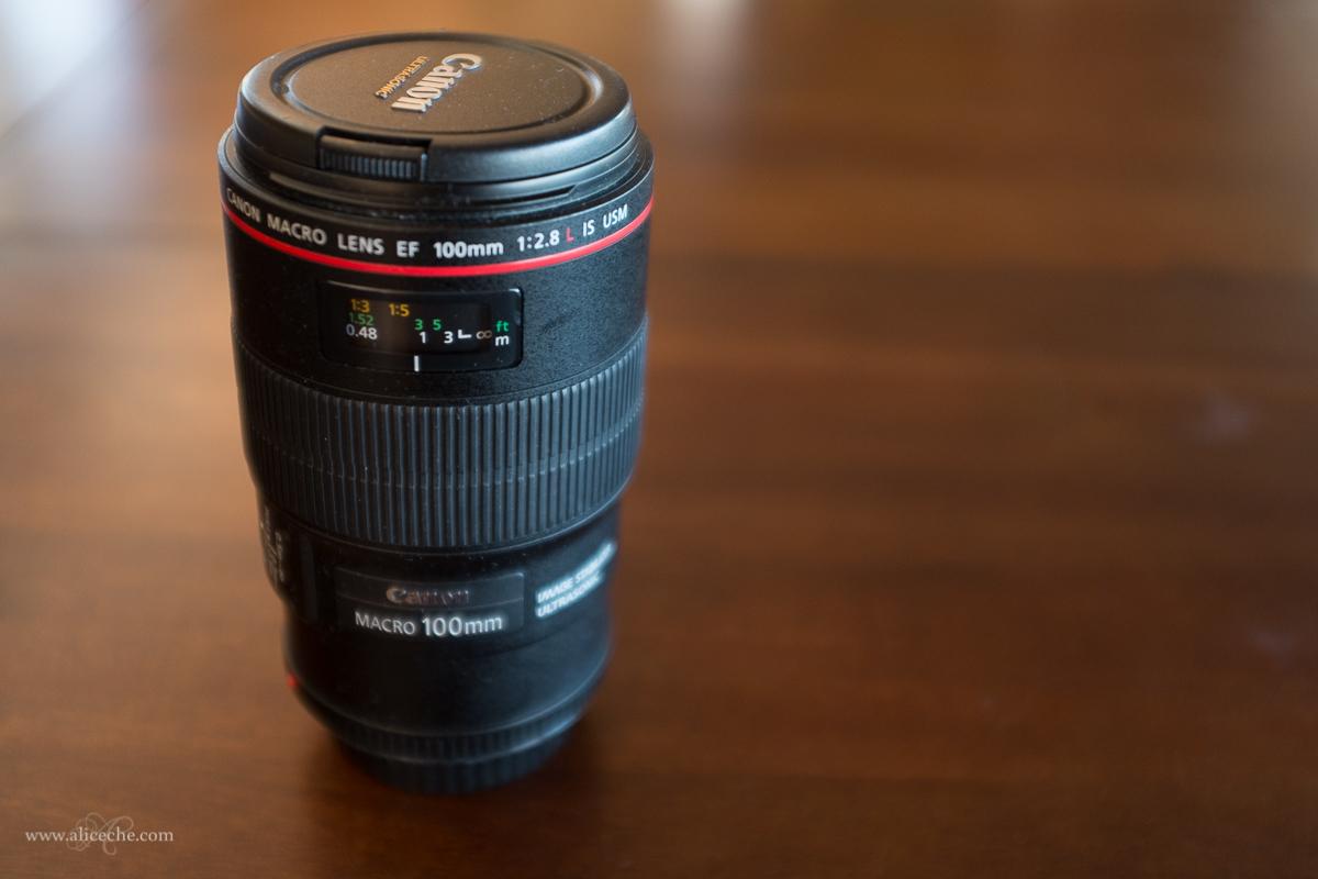 Canon 100L macro lens