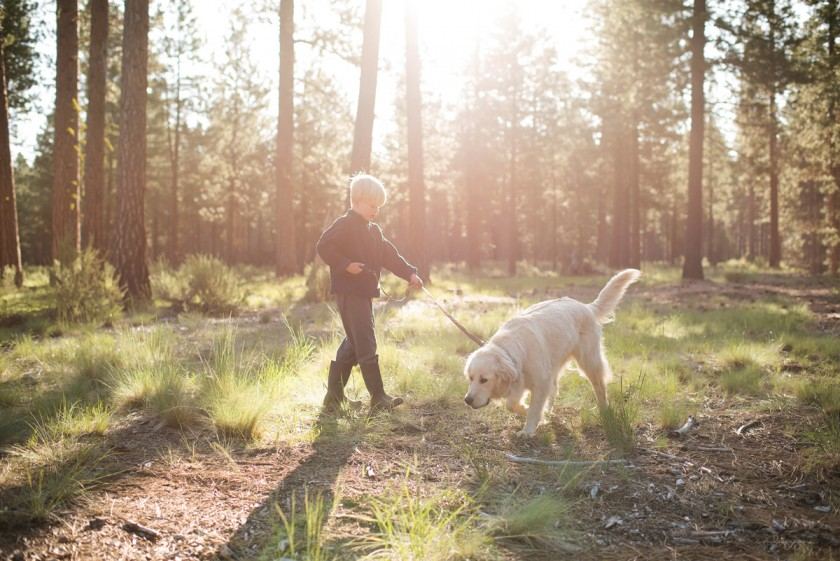 backlit photo of a boy walking his dog by Lacey Meyers