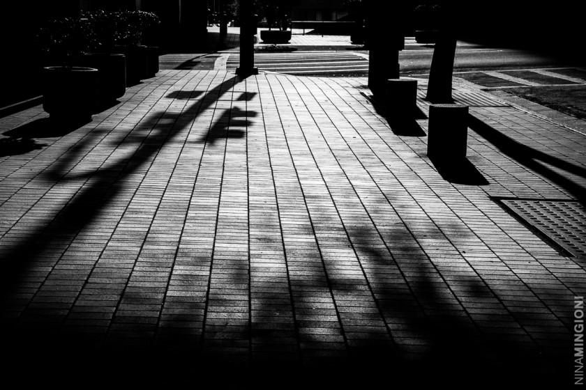 light and shadows on the sidewalk by Nina Mingioni
