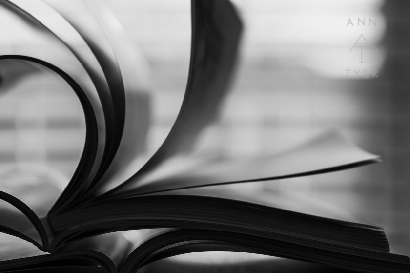 pages of a book flipping by Ann Tyer