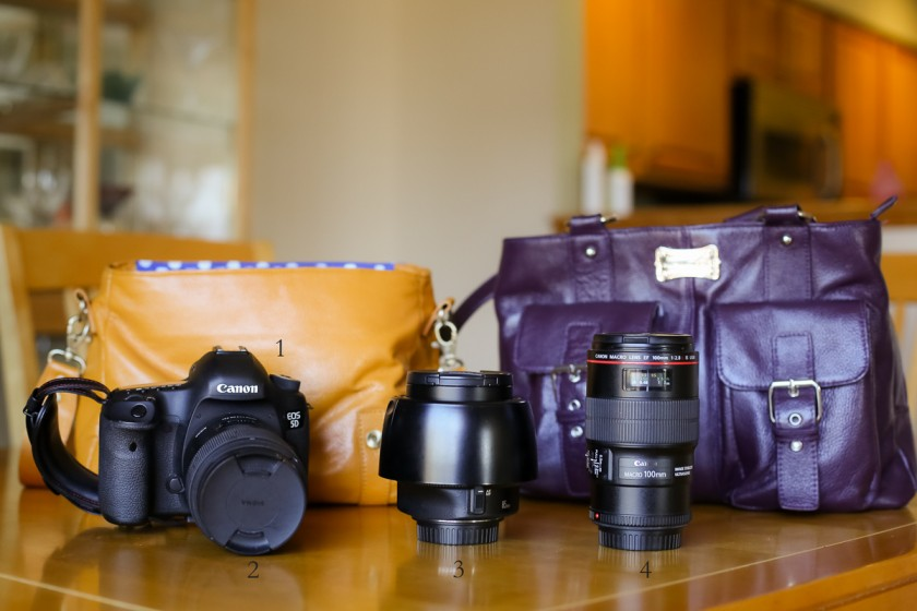 camera bags and equipment of photographer Kristy Dooley