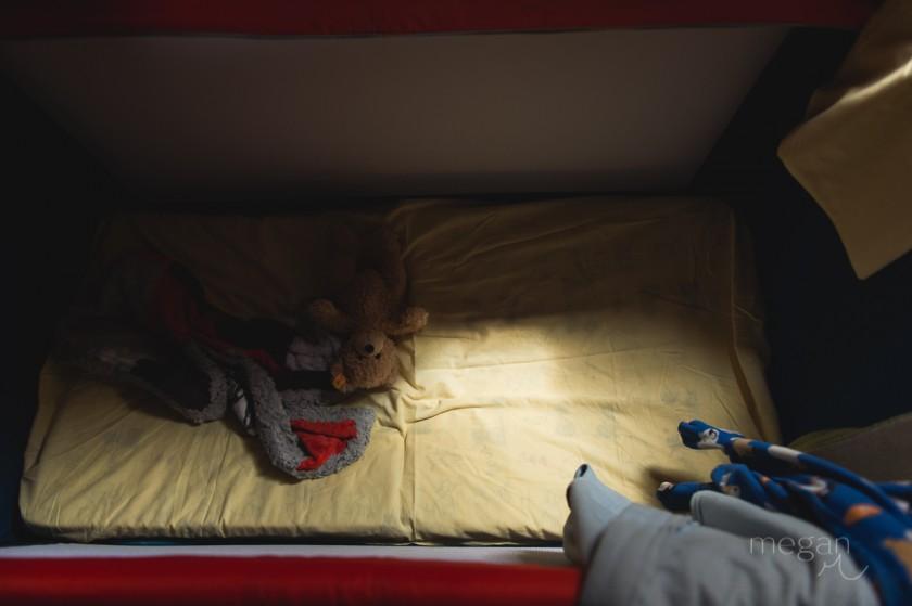 11 Teddy bear still life in low light by photographer Megan Cieloha