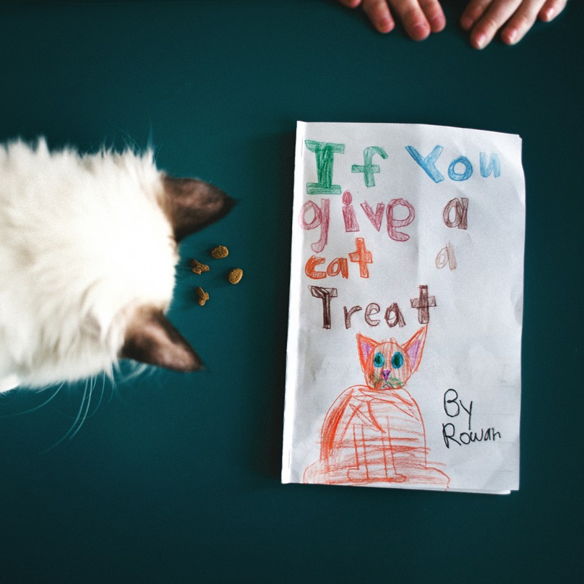 a boy and his cats photo project by Beth Mancuso of Manic Mother Photography