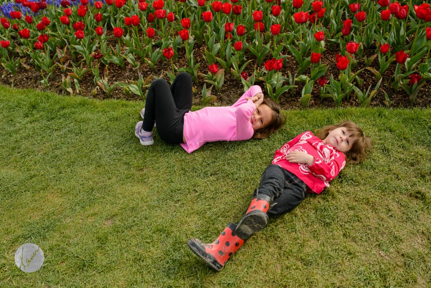 girls laying in the grass by tulips by Kami Chaudhery