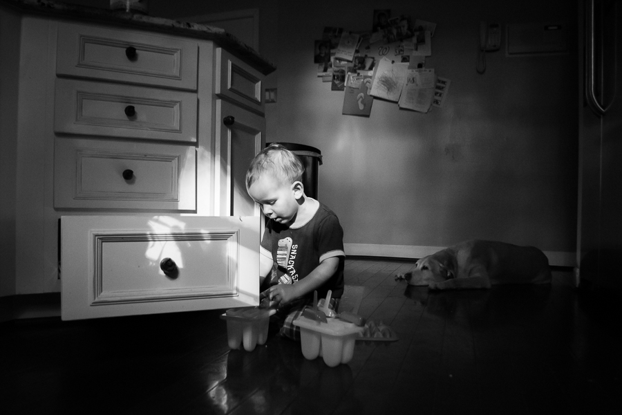 Child-Playing-and-Dog-Sleeping-in-Dappled-Light-of-Kitchen-by-Nicole-Sanchez