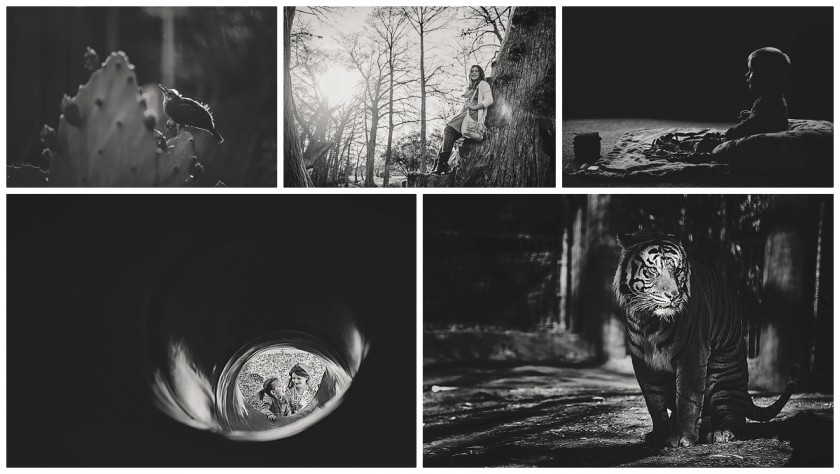 black and white dramatic light photographs by Courtney Rust of Rusty Lens Photography