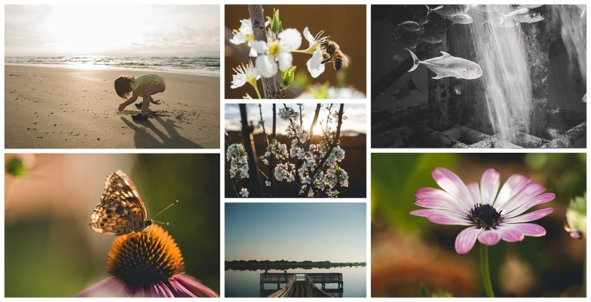 inspiring pictures by Courtney Rust of Rusty Lens Photography