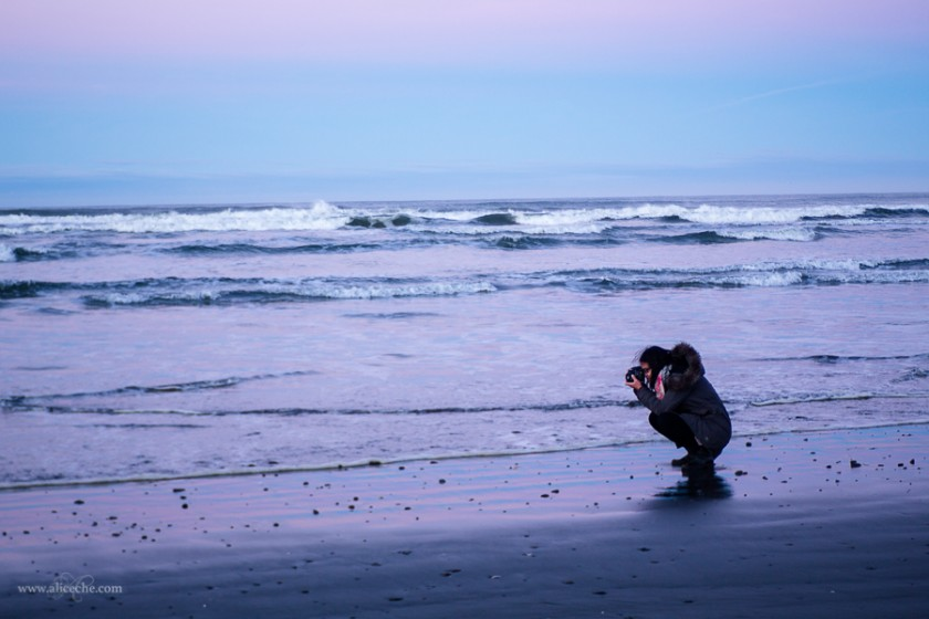 nature photos on the beach by Alice Che
