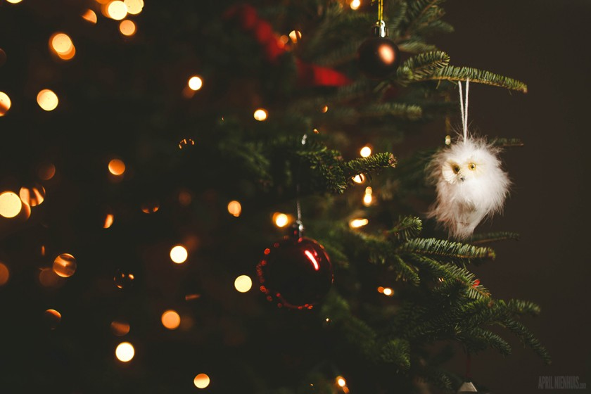 Christmas owl ornament on the tree by April Nienhuis
