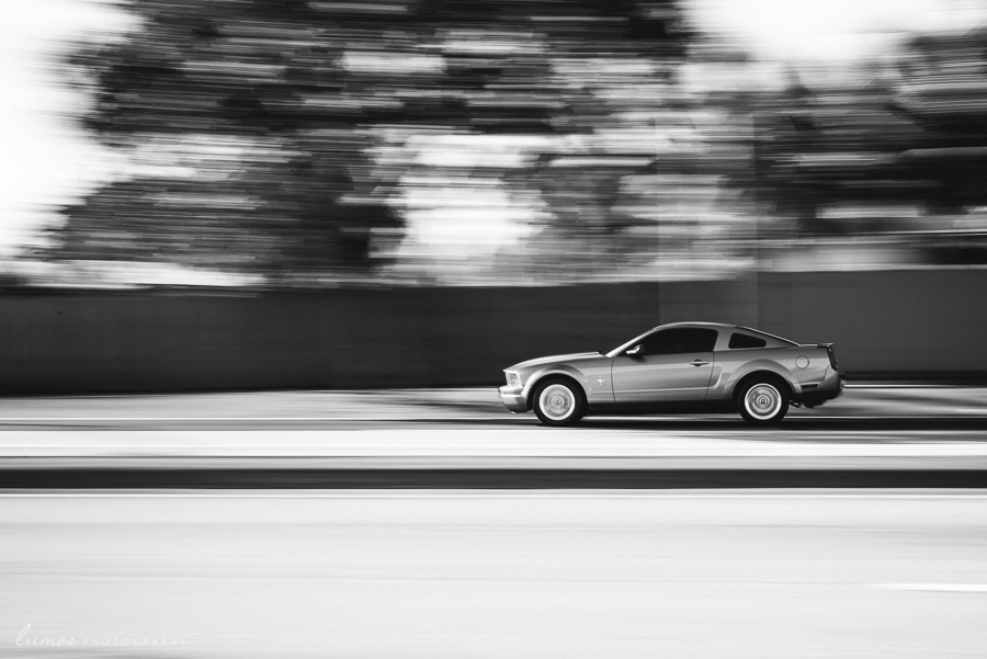 Motion-Blur-and-Panning-with-Mustang-Automobile-in-Black-and-White-by-Kate-Winslow