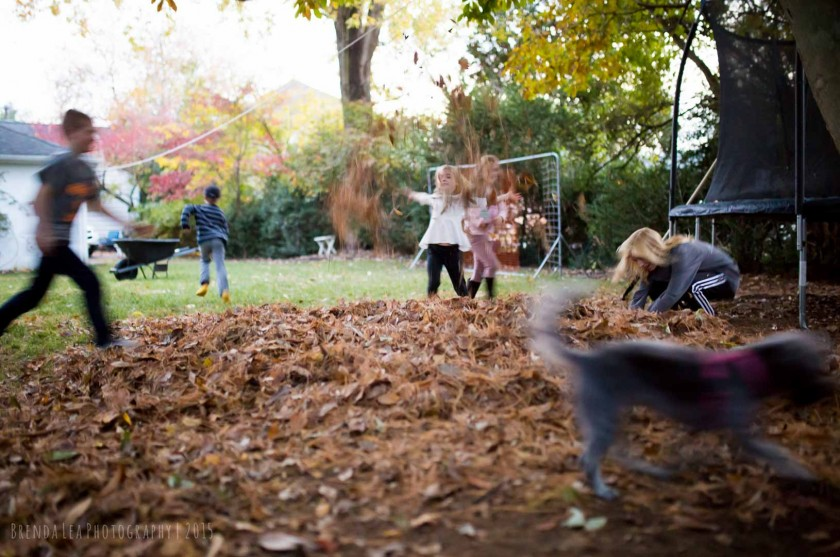 Motion-Blur-in-a-Busy-Playful-Scene-with-lots-of-Outdoor-Activity-by-Brenda-Lea-Photography
