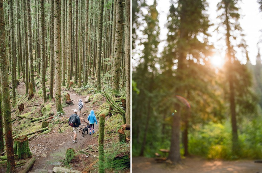 family vacation photo in the forrest by Kim Hildebrand
