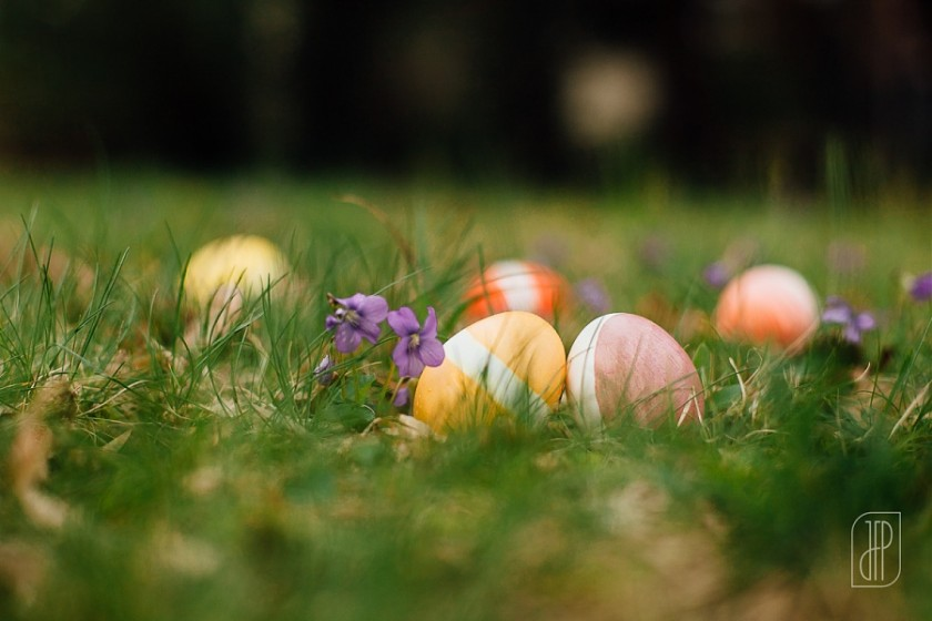 Easter eggs lying in the grass by Juliette Fradin