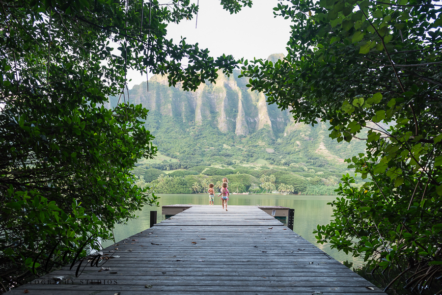 Trees-Framing-Children-Running-to-End-of-Pier-in-Beautiful-Hawaiian-Setting-by-Marian-Diop