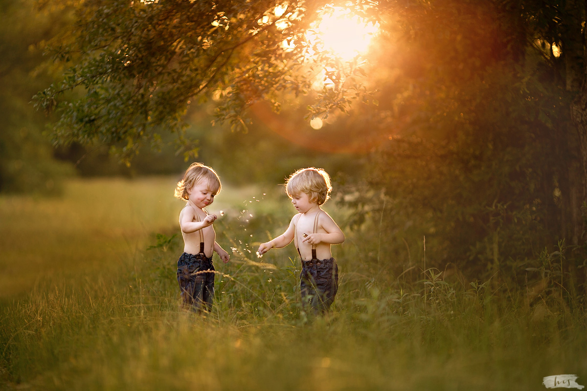 backlit photo of twin boys in a field by Heather Stockett