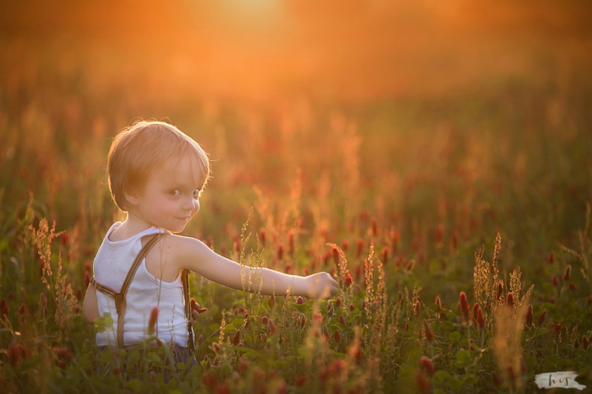 picture of boy in a field by Heather Stockett