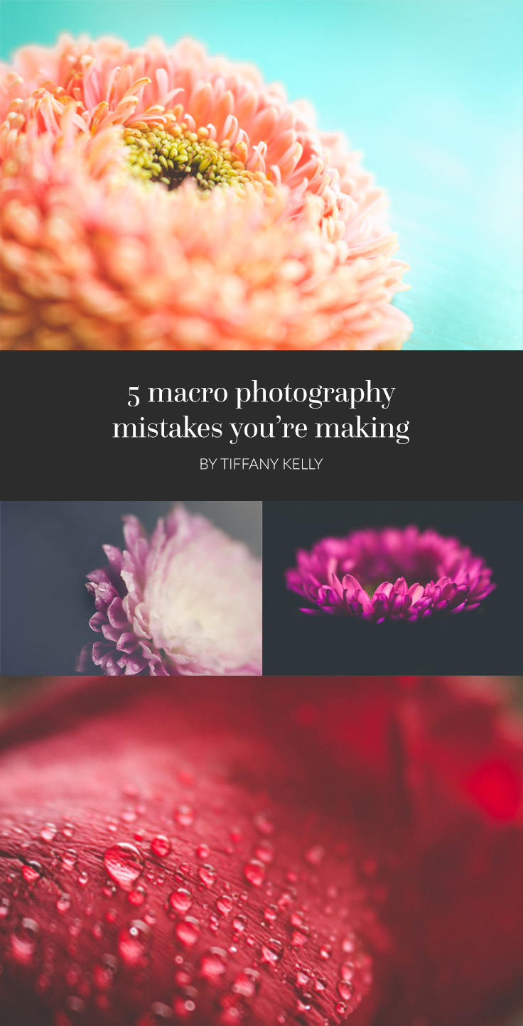 5 macro photography mistakes you're making