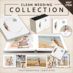The Clean WEdding Template Collection PLUS $  100 gift certificate
